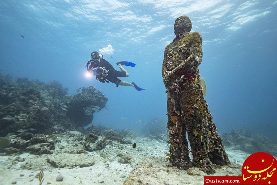 www.dustaan.com با دیدن این جزیره بسیار زیبا شگفت زده می شوید! +تصاویر