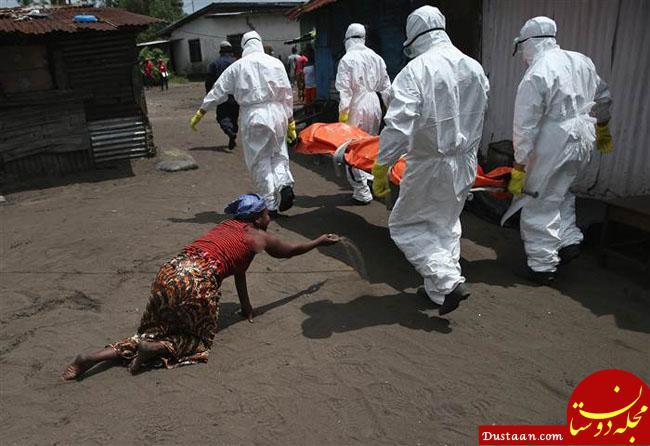 www.dustaan.com بیماری ابولا در کنگو بیش از 200 کشته گرفت