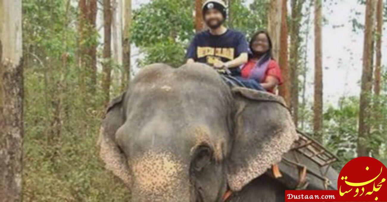 www.dustaan.com فرار استاد بدهکار به جنگل های هند سوژه شد! +عکس