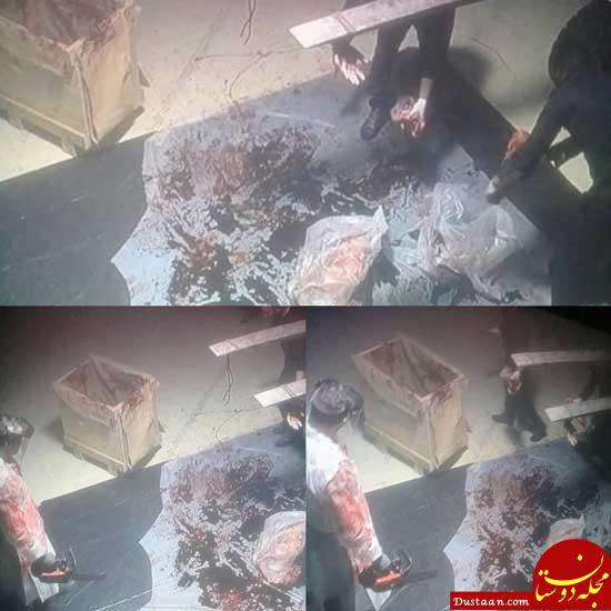 www.dustaan.com اولین عکس ها از تکه های بدن خاشقجی +18