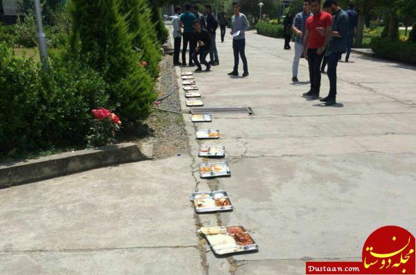 www.dustaan.com مگس و دستکش در غذای دانشجویان! +تصاویر