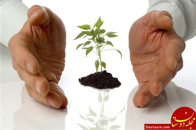 www.dustaan.com رزق کلمه ای است بسیار فراتر از آنچه مردم می دانند!