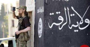 متحدان آمریکا به دنبال دستیابی به گنج داعش!