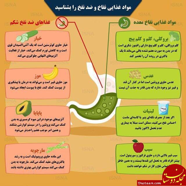 مواد غذایی ایجاد کننده نفخ و ضد نفخ ها را بشناسید