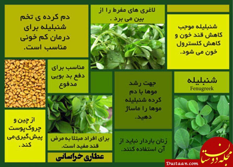 www.dustaan.com بهترین درمان های طبیعی برای مشکلات پوستی