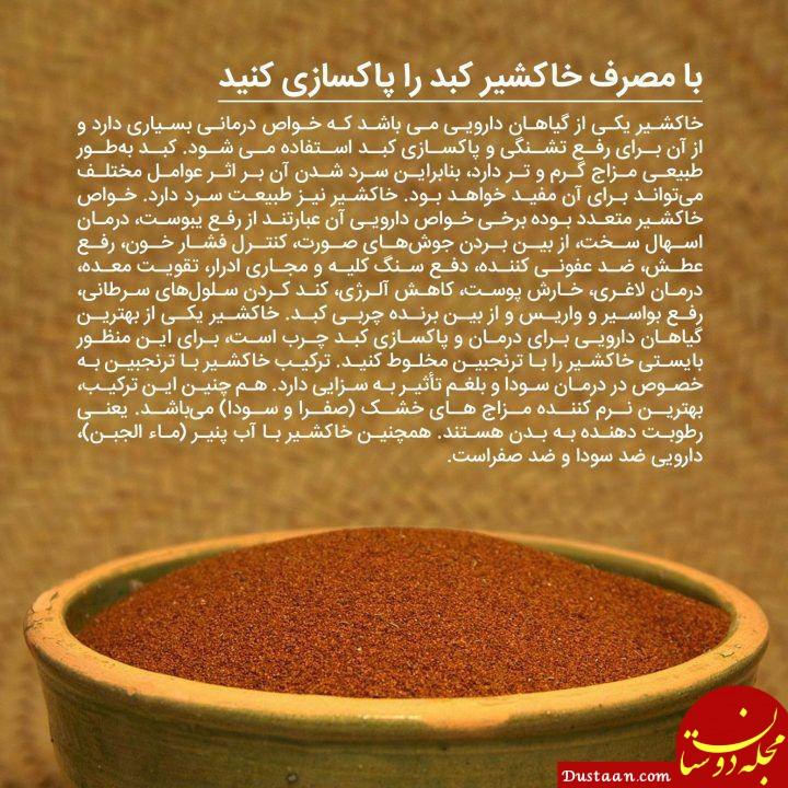 www.dustaan.com با مصرف خاکشیر کبد را پاکسازی کنید