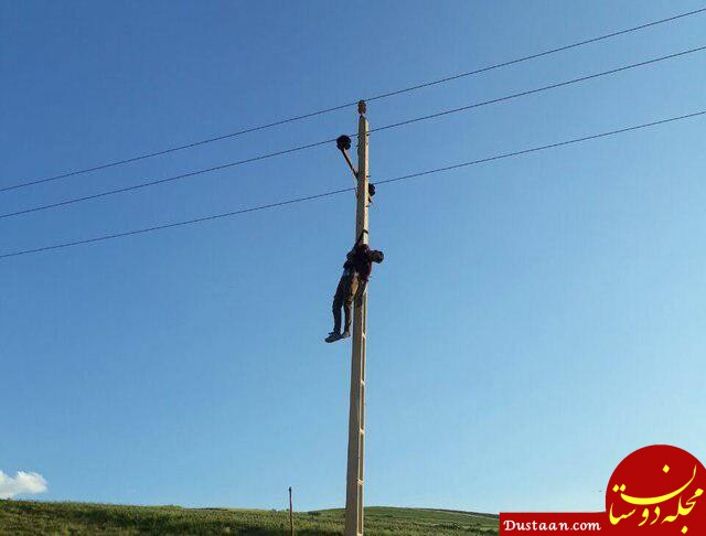 www.dustaan.com مرگ دلخراش سارق سیم برق به دلیل برق گرفتگی +عکس