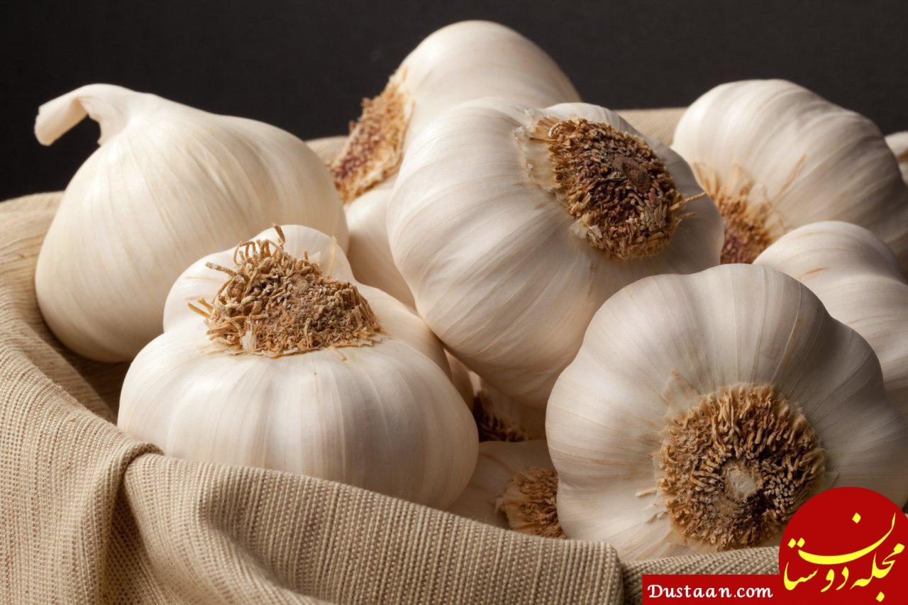 www.dustaan.com روش از بین بردن بوی سیر دهان و غذا