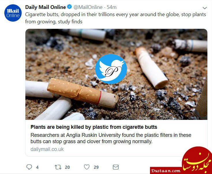 www.dustaan.com کشته شدن زمین با «ته سیگار»