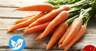 آیا خوردن هویج واقعا به بینایی کمک می کند؟
