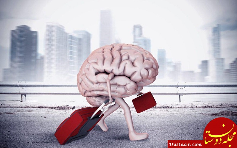 www.dustaan.com معاون رئیس جمهور: فرار مغزها نداریم