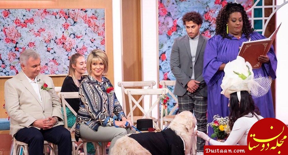 www.dustaan.com ازدواج عجیب یک زن با سگش در برنامه تلویزیونی +عکس
