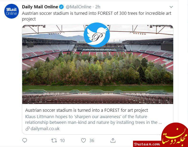 www.dustaan.com استادیومی که تبدیل به جنگل شد! +عکس