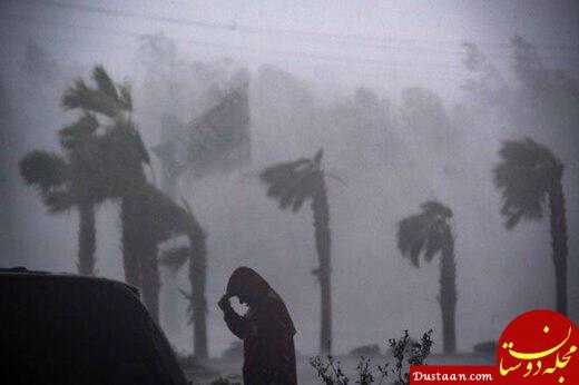 www.dustaan.com طوفانی با سرعت ۱۰۰ کیلومتر در ساعت زابل را در هم کوبید
