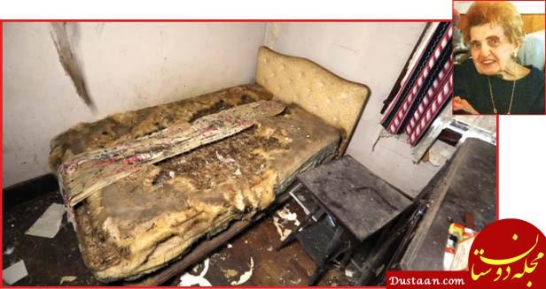 www.dustaan.com زن تنها در خانه غذای سگ و موش ها شد! +عکس