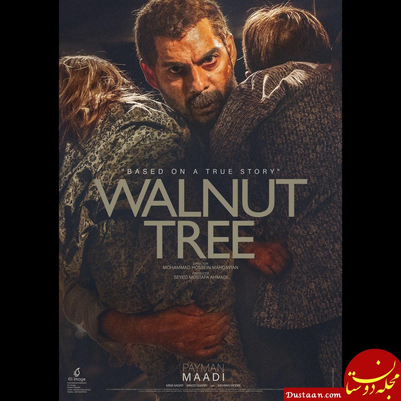 www.dustaan.com - رونمایی از پوستر بین المللی «درخت گردو»