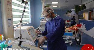 برخی از کادر درمان مسیح دانشوری درگیر کرونا شده اند