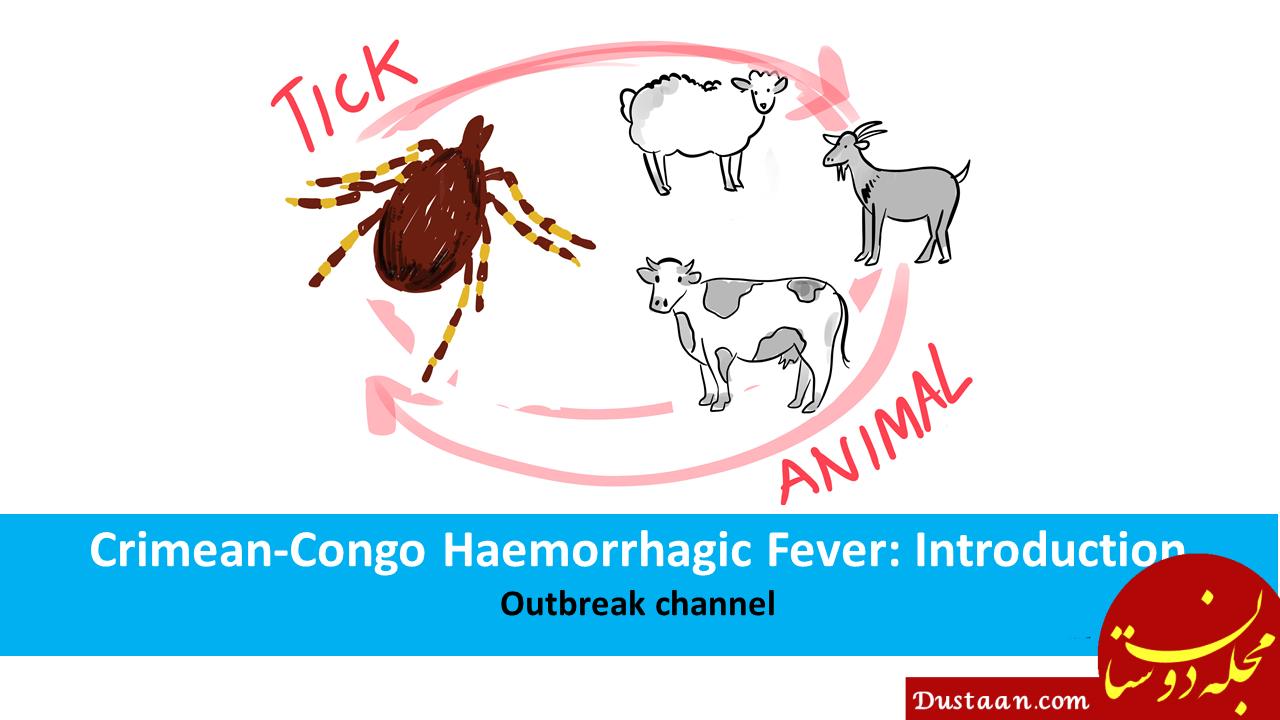 علایم تب کریمه کنگو را بهتر بشناسید