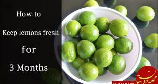 بهترین روش برای نگهداری لیموی تازه