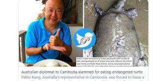 عذرخواهی سفیر استرالیا در کامبوج به دلیل خوردن لاک پشت