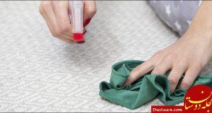 آموزش شستشوی فرش با دست در خانه