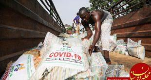 کشف گونه جدیدی از کروناویروس در نیجریه