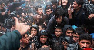 بازگرداندن اجباری و مودبانه افغانها از اروپا شروع شد