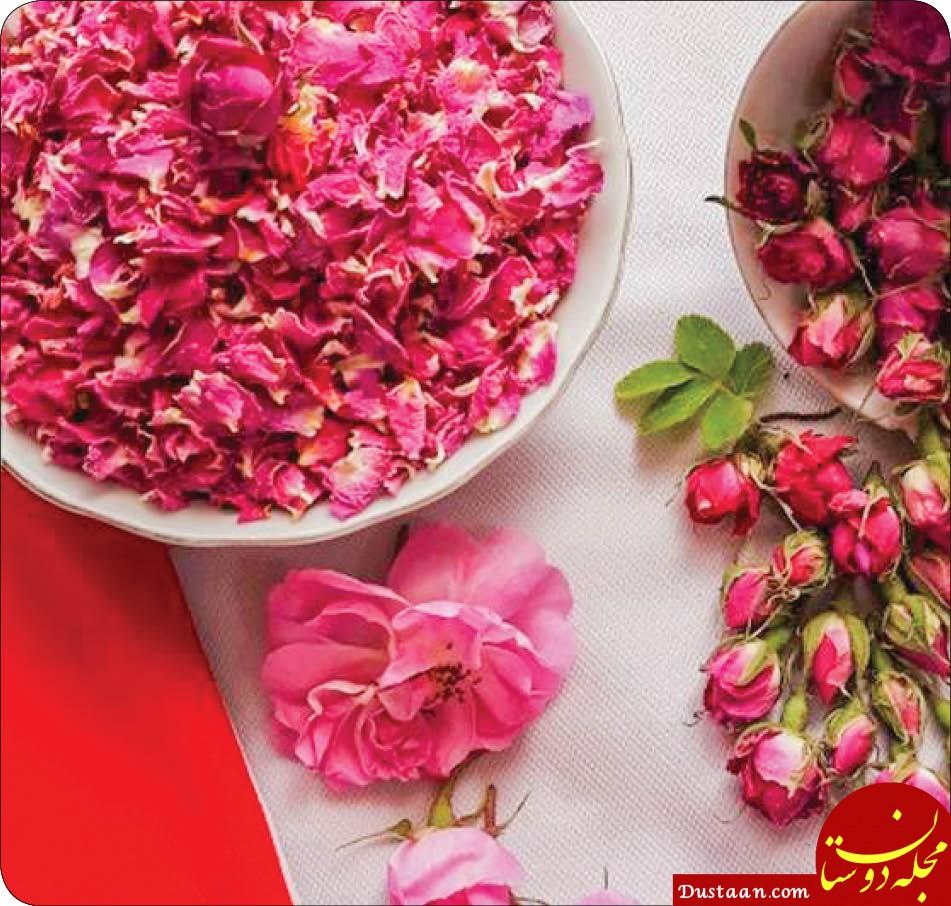 گل محمدی ؛ خواص و روش های استفاده از آن