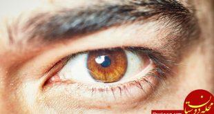 اندازه مردمک چشم توانایی مغز را نشان می دهد!