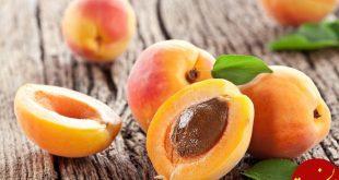 هسته کدام میوه ها کشنده هستند؟