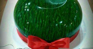 در این بخش از محله آشپزی دوستان قصد داریم تا شما کاربران عزیز را با طرز تهیه ژله به شکل سبزه برای نوروز آشنا ک...